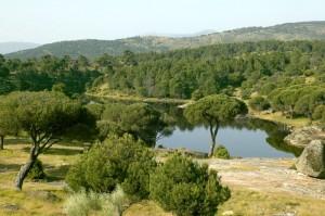 hoyo-pinares-naturaleza-2