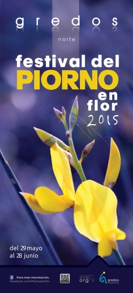 Festival Piorno en Flor 2015