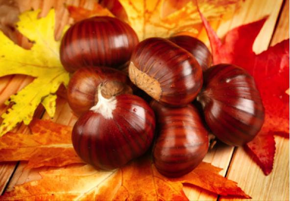 sopa de castañas y setas Ávila otoño