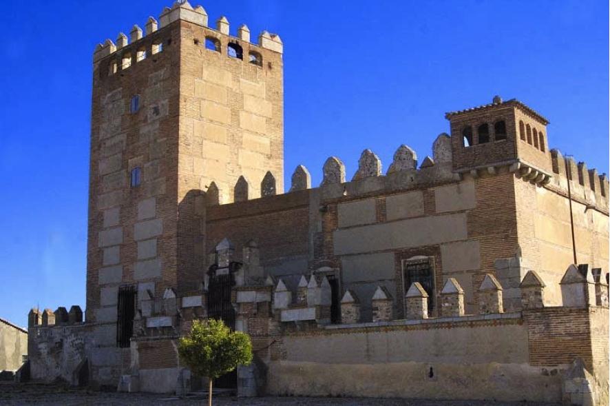 Castillo de Narros de Saldueña