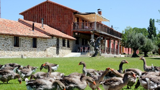 Restaurantes en Bonilla de la Sierra